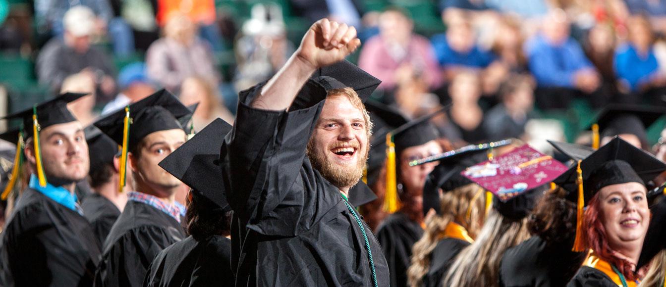 dissertation coach cost