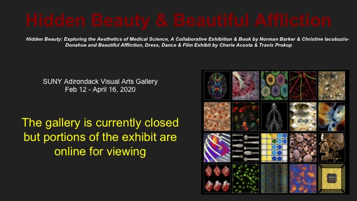 Hidden Beauty features medical photography.