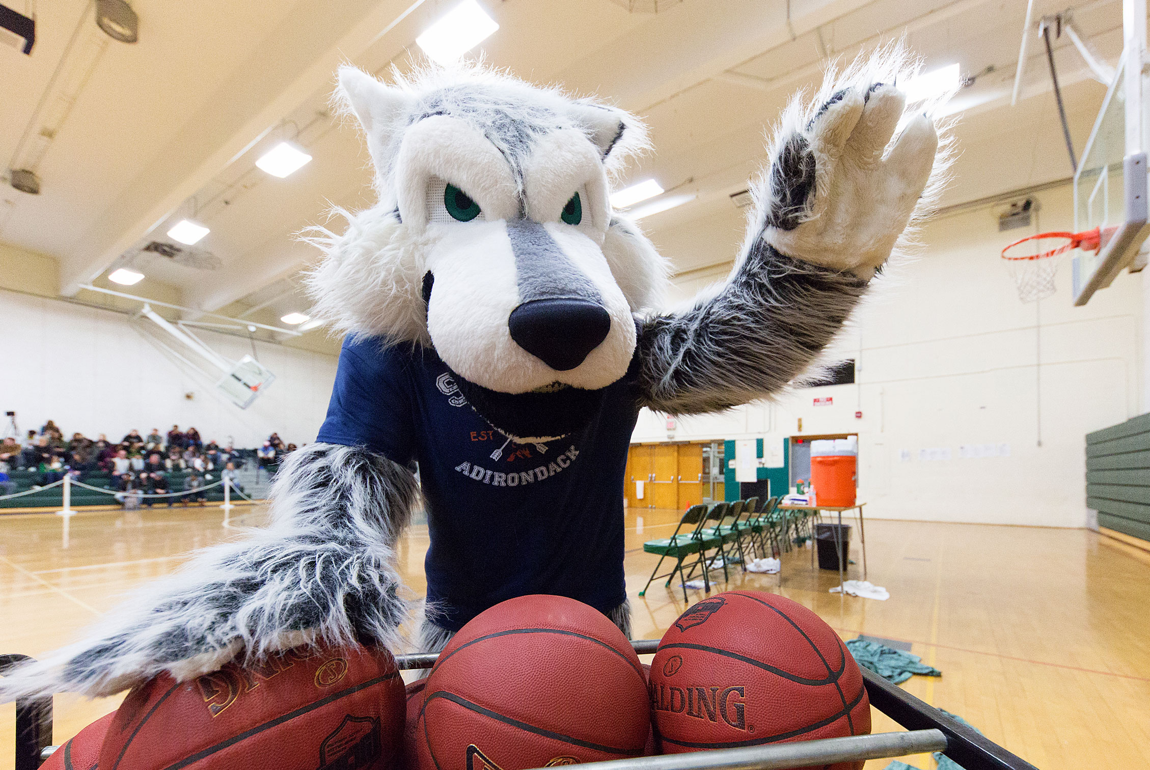 Eddy Rondack, the school mascot in the gym