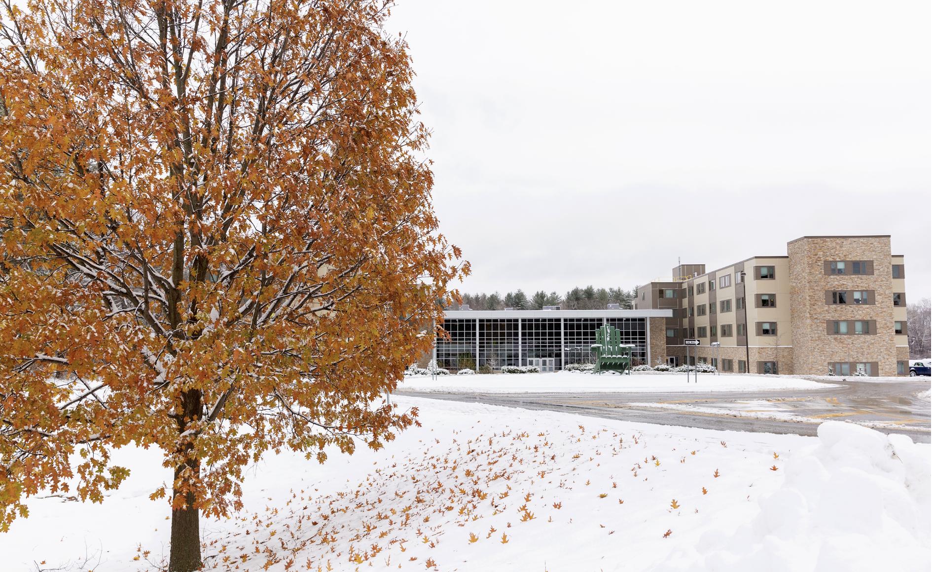 Winter scene on campus